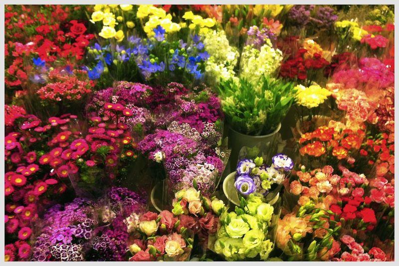 FLOWER MARKET5